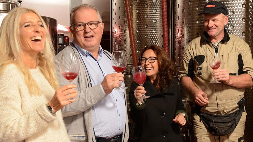 Winery & Cellar